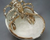 Ceramic Lobster Bowl by Shayne Greco beautiful mediterranean glazed pottery.