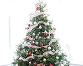 Christmas Photograph, Christmas Tree Photo, Digital Download, Printable Do It Yourself Gift Tag Art, DYI Notecard Art, Seasonal Photography