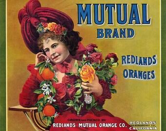 DVD Vintage FRUIT Crate LABELS Antique Advertising Orange Apple Citrus Vegetables Produce High Resolution Images