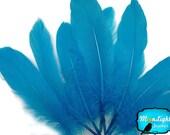 Wholesale Goose Feathers, 1/4 lb - TURQUOISE Goose Satinettes Loose Feathers (bulk) : 3203