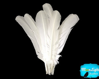 Wholesale Turkey Wing Feathers, 1/4 lb -WHITE Turkey Rounds Secondary Wing Quill Feathers : 2152