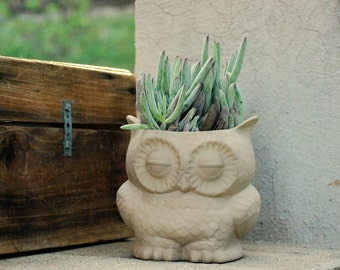 large owl planter natural