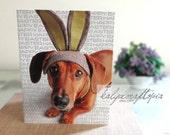 Dachshund Easter Card - Purple Bunny Ears