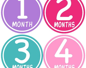 Baby Month Stickers Baby Girl Monthly Milestone Stickers Hot Pink Purple First Year Stickers Month Stickers Baby Shower Gift - Jessica