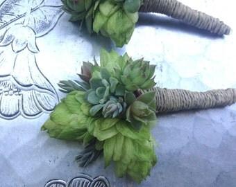 Boutonnière, hops and succulents