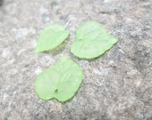 Light Green Lucite Leaf Charm/Pendant 20 pcs. mm(Item Number PL591-6)
