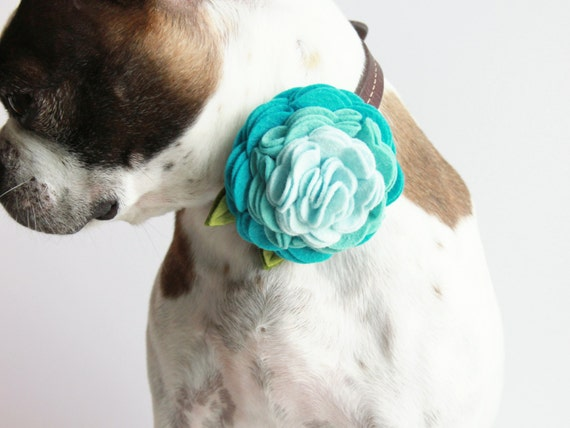 Items Similar To Ombre Rosette Wool Felt Flower Dog