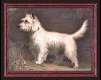 West Highland Terrier Dog Miniature Dollhouse Art Picture 6775