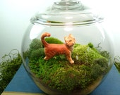Small Covered Vase Hydroculture Terrarium, Glass, Cat, and Moss. Great for HOME or OFFICE. Nice Unusual Gift.