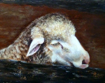 Lamb oil painting 6x8 by Alexandra Kopp