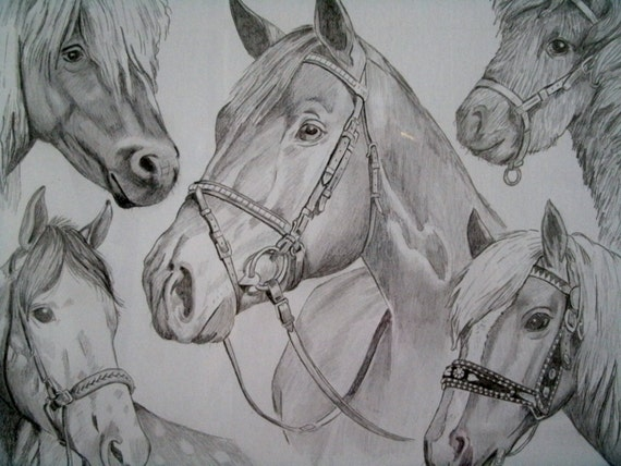 Native American Horse Drawing Drawing of five breeds of