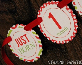 READY to SHIP Christmas Collection: Monthly Red and Green first birthday photo banner. Polka Dots. Picture Banner. Stripes. Chevron.