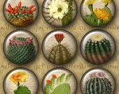 1 inch Digital Printable Circles VINTAGE CACTUS collage sheet for Jewelry Pendants Magnets Crafts...Antique Botanical Art