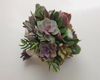 Whispered Whimsy Succulent Bridal Bouquet // Succulent Bouquet