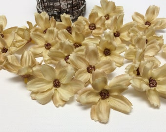 Silk Flowers - 24 BEIGE Baby Cosmos - TINY FLOWERS - Artificial Flowers