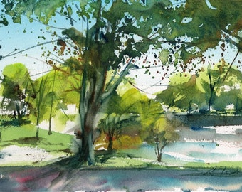Worcester Sketchbook, Elm Park during May, limited edition of 50 fine art giclee prints from my original watercolor
