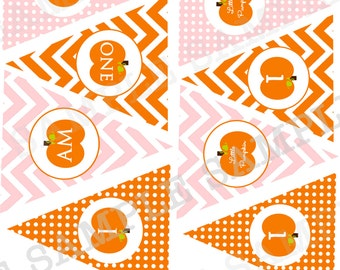 Pumpkin High Chair Banner First Birthday and Cake Bunting - Chevron First Birthday Little Pumpkin Harvest Leaves Fall  INSTANT download