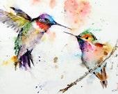 HUMMINGBIRDS 11 x14 Watercolor Print by Dean Crouser