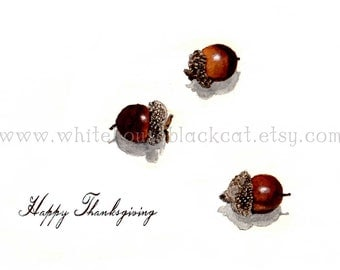 Thanksgiving Cards Set, Rustic, Acorns in the Snow - 5 with envelopes