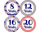 Pregnancy Stickers, Pregnancy Announcement, Weekly Stickers, Belly Stickers, Pregnancy Photo Prop, Belly Bump Stickers, Coral Gray (P002)
