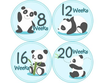 Pregnancy Reveal, Baby Announcement, Pregnancy Weekly Stickers, Pregnancy Gift, Belly Bump Stickers, Photo Prop, Panda (B086-P)