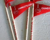 Vintage Pony Swim Pencil and Pennant Pony Souvenir Chincoteague Virginia