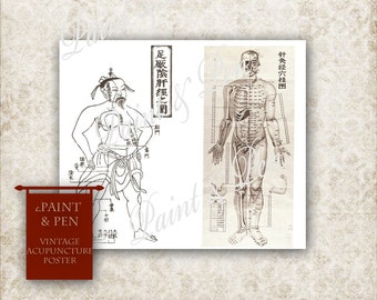 16x20 Medical Reference Poster - Ancient & Modern Acupuncture Models Medical Charts Human Body Samurai Ancient Chinese Medicine DIGITAL Art