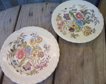 Vintage Floral Plates, Set of 2 Cottage Chic Plates, Crafting Plates, Vernon Kilns Plates