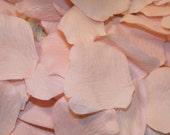 500 Blush BULK Rose Petals - Artifical Petals - Blush Pink - Bridal Shower Wedding Decoration - Flower Girl Basket Petals Table Scatter