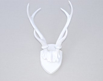 Large Faux Taxidermy Deer Antler Mount - White Antlers And Plaque - Unique Fake Resin Decor - Animal Friendly Wall Art - HT0101