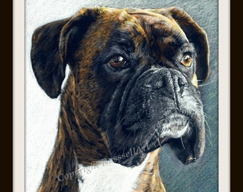 The Portrait - Boxer Dog A4 A3 or A2 Size Limited Edition Print direct from English Artist Stephen Russell from RussellArt