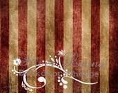 NEW Item 7ft x 8ft Photography Backdrop / Vintage GRUNGE Red Stripes Extra LARGE