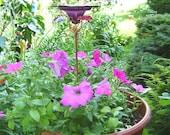 CONTAINER GARDENING, Butterfly Feeder, stained glass,  PLUM Purple, copper, garden stake, Garden Art