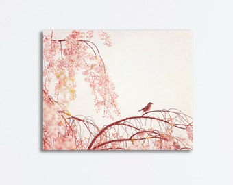 "Bird Canvas Wrap - light pink artwork robin photography nursery canvas print pastel pale baby girl decor - 16x20, 11x14 ""Little Dreamer"""