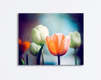 "Large Flower Canvas Wrap - tulips navy blue orange coral peach floral photography nature gallery wrapped canvas art print, ""Moment in Time"""