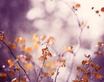 "Purple Nature Photography, plum orange brown rust cream purple wall art branches print branch photo violet photograph, ""Garden Sanctuary"""
