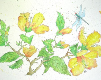 Yellow Hibiscus and Dragonfly