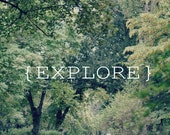Nature Photography, Explore, Tree Photography, green trees, Typography, Path, soft green, landscape,  europeanstreetteam