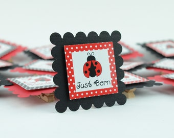 Lady Bug 12 Month Photo Banner, First Year Photo, First Year Banner, Black and Red Dots, Lady Bug Theme, c-1022