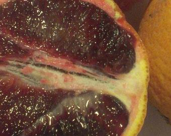 Blood Orange Tree Tropical Fruit
