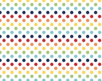 Rainbow Small Dots From Riley Blake
