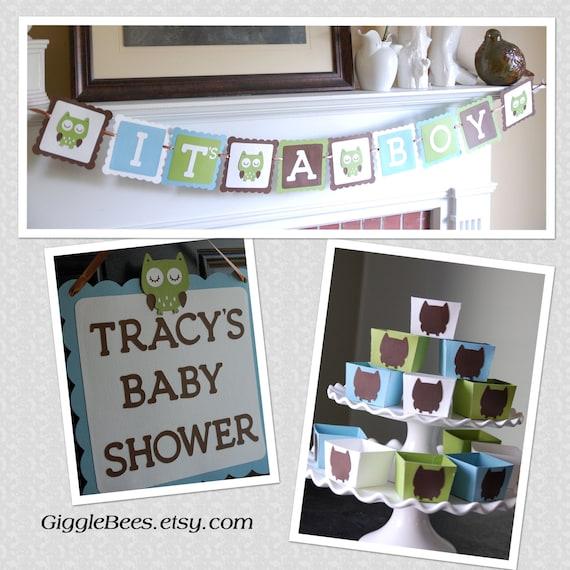 Boy Baby Shower Owl Decorations 570 x 570