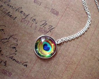 20% OFF - Peacock Eye feather Golden Blue Green  Multi color  Pendant Necklace,,Gift Idea