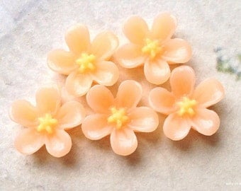 13 mm Peach Colour Water Melon Resin Flower Cabochons (.ss).