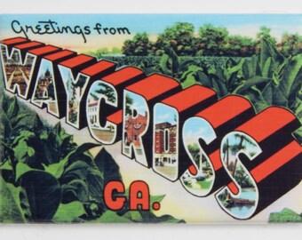 Greetings from Waycross Fridge Magnet
