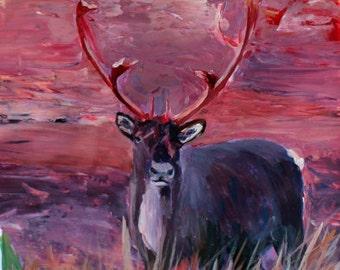 The Mighty Moose Mongoose Reindeer Elk Rentier Caribou -Limited Edition Fine Art Print