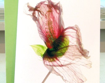Handmade Card Greeting Card. Note Card Hibiscus Artist Note Card