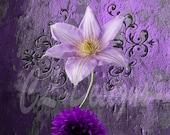 Instant DIGITAL Download Amethyst Purple Flower Scrolls Fine Art Print 300dpi Wall Art Pretty Feminine Grunge
