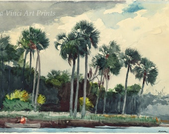 Winslow Homer Watercolor Reproductions. Red Shirt, Homosassa, Florida - 1904. Fine Art Print.