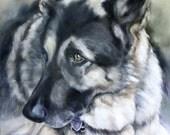 Custom Pet Portrait, Oil Painting, Pet Portrait, German Shepherd Painting, Animal Portrait, 12x16